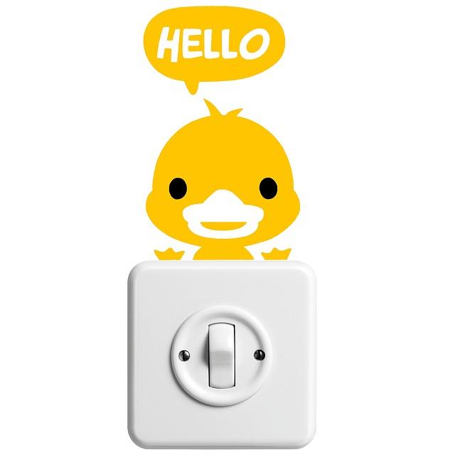duck-1049719_640