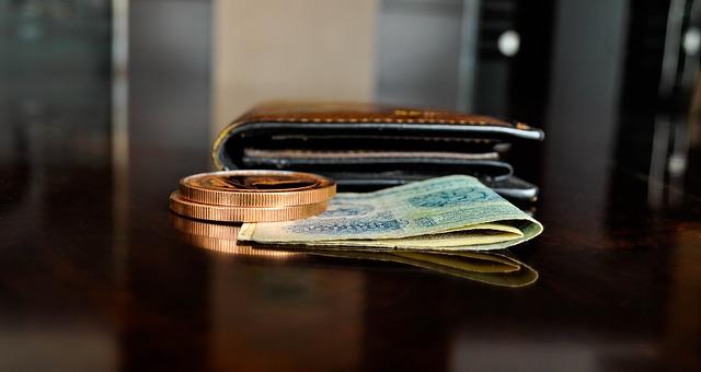 peněženka, mince, peníze