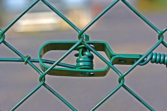 plot zelený